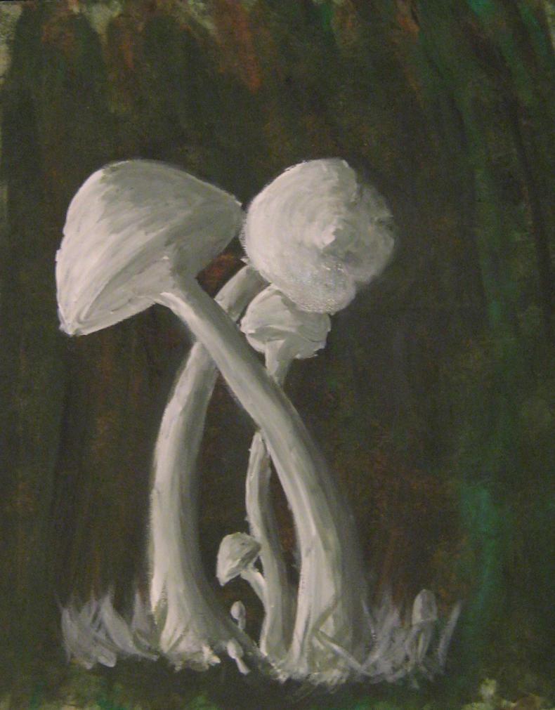 Poruka vasoj ljubavi..., Ucinite to ovde Mushrooms_by_killingursoulxx-d481gpj