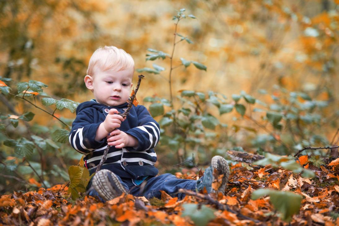 Emilien , balade dans les bois, couleurs d'automne by D4Ybe