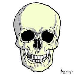 Skull D: by asganafer