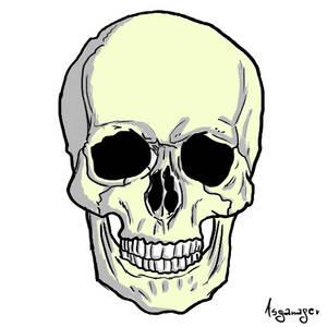 Skull D: