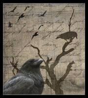 The Raven by Ravennae