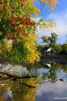 Happy fall3