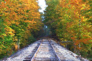 Happy fall6 by MDDahl