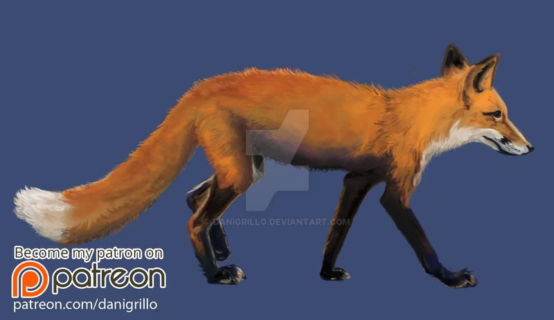 Patreon fox by DaniGrillo