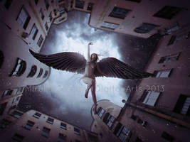 Fallen From the Sky by MirellaSantana