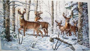 Woodland Winter by EnigmaticWriterGirl