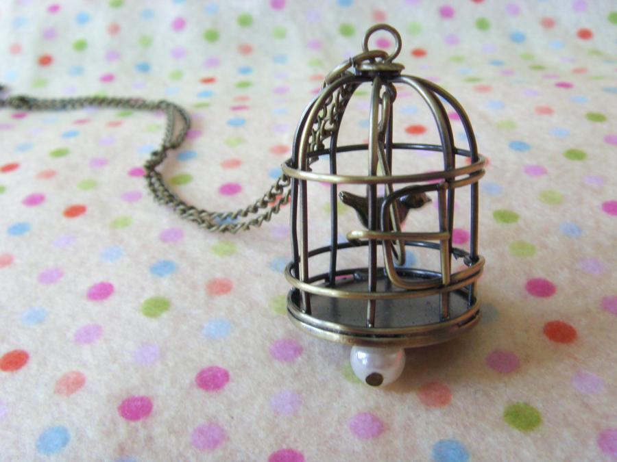Bird cage tumblr