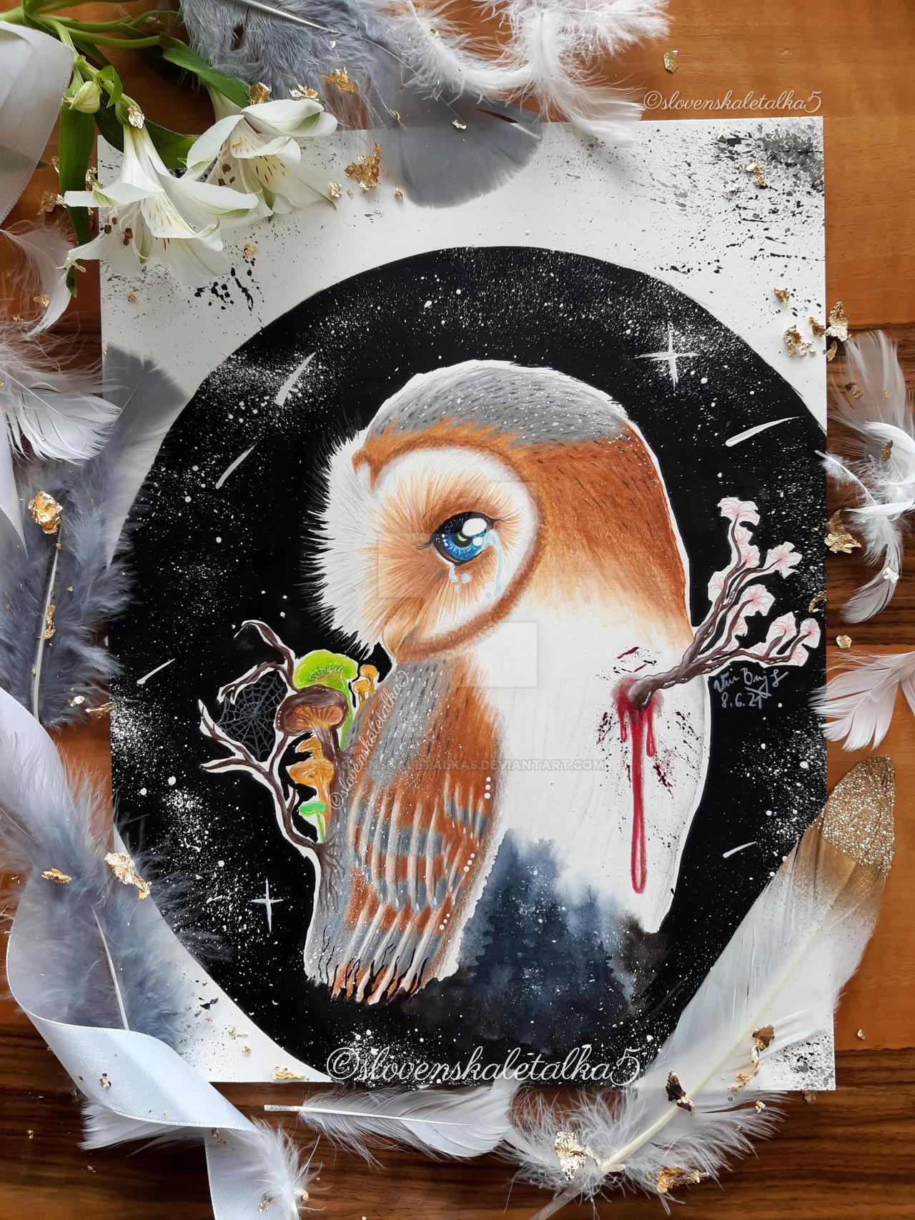 Spiritual animal - Owl