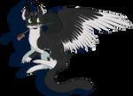 Kira the Dragon-cat