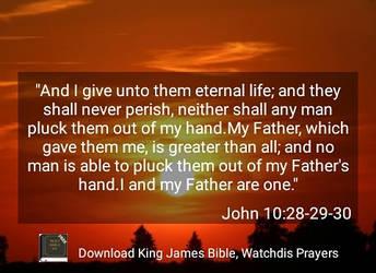 John 10:28-30 by crossmaximus