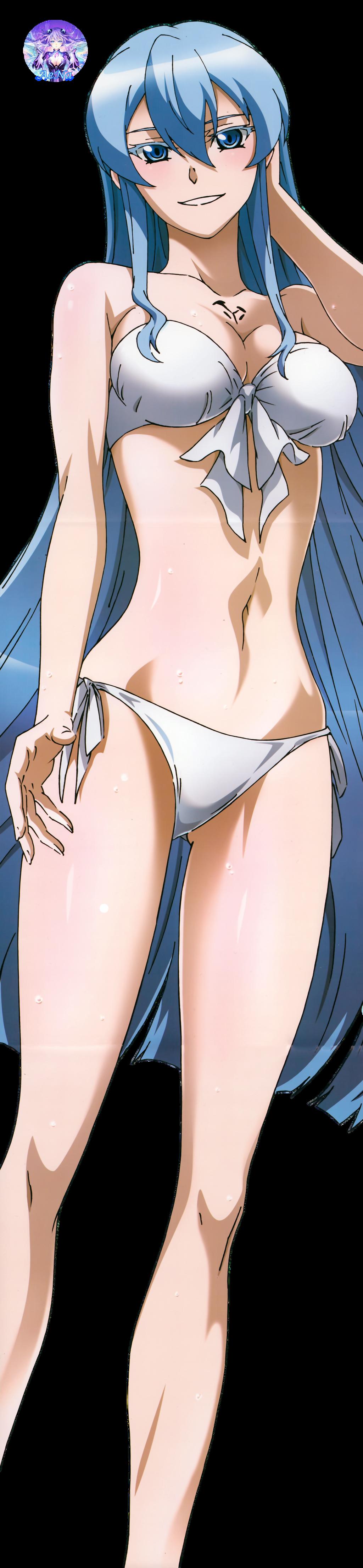 Akame ga Kill!  07 Render by AeNa34