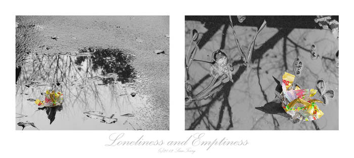 Loneliness and Emptiness