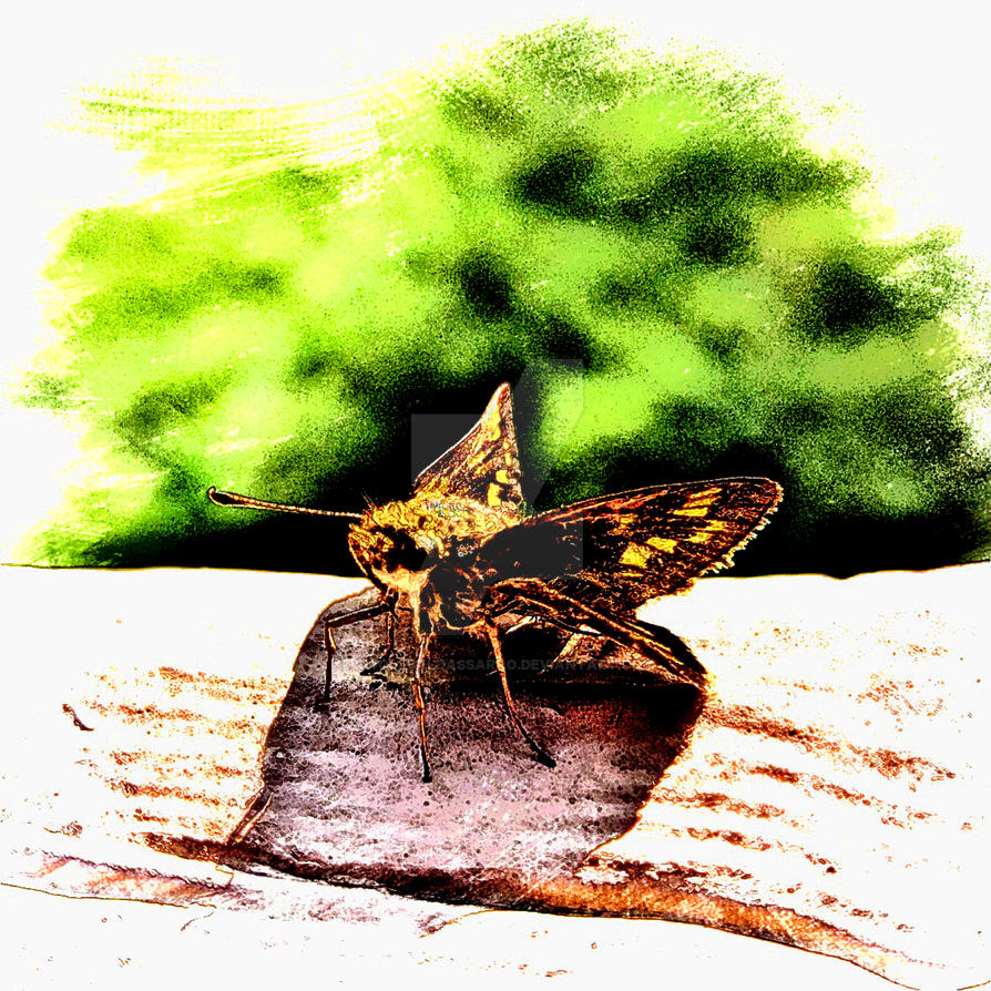 A Bug's Life - redrawn by rwolfbaldassarro
