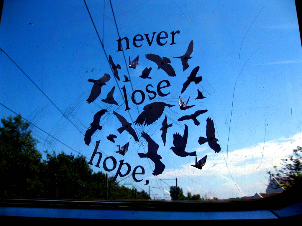 8 Never Lose Hope by thanxforthefish