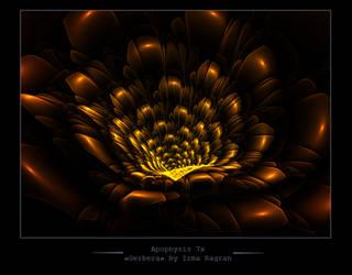 Gerbera fractal by Irma-Ragran
