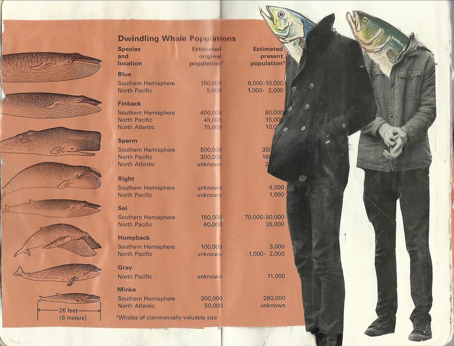 Dwindling Whale Population by YummyUkulele