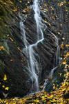 Beaver waterfall in detail