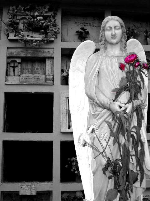 The Angel with flowers by ephedrina