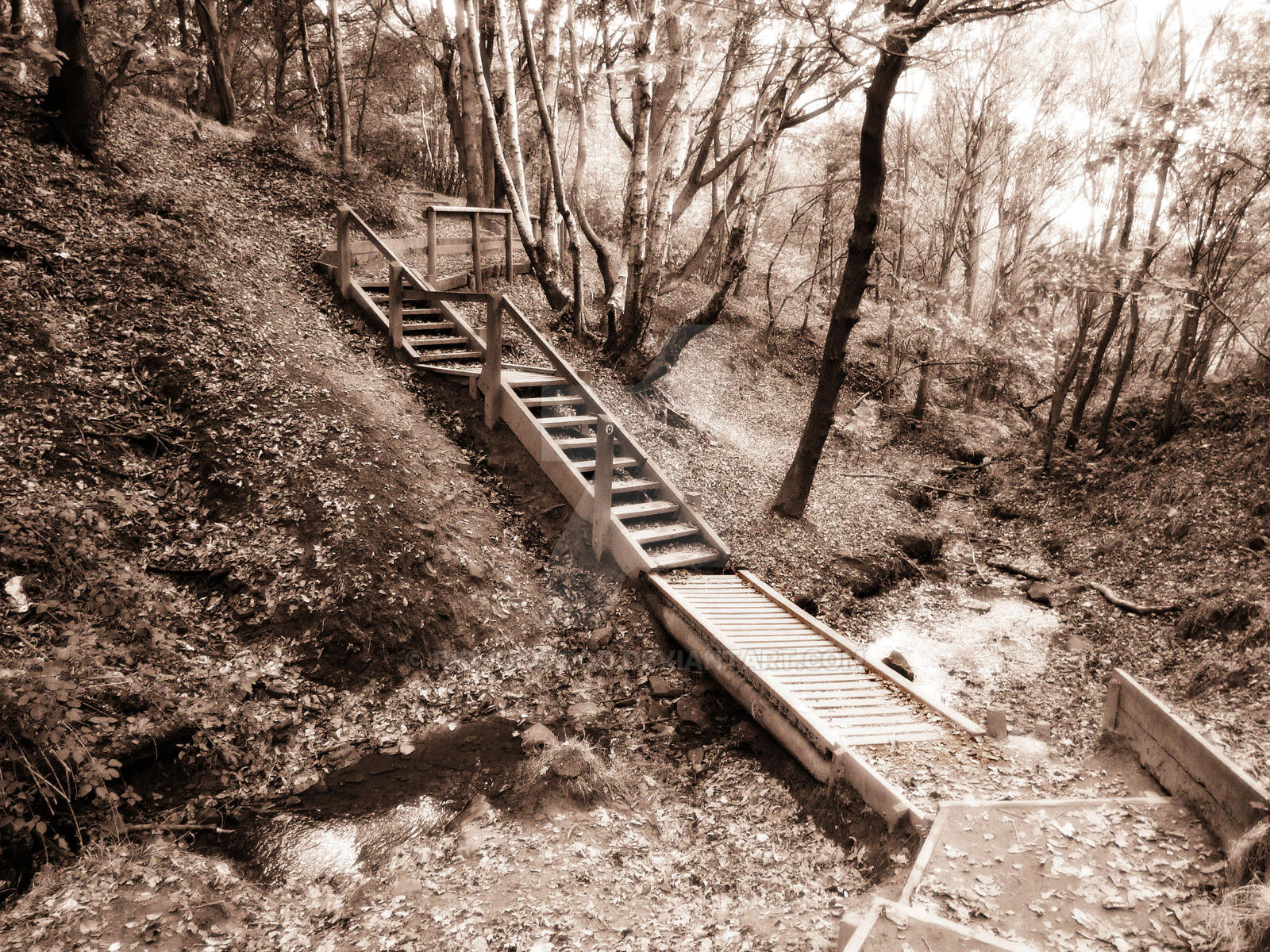 Follow The Path By Richopwood On DeviantArt