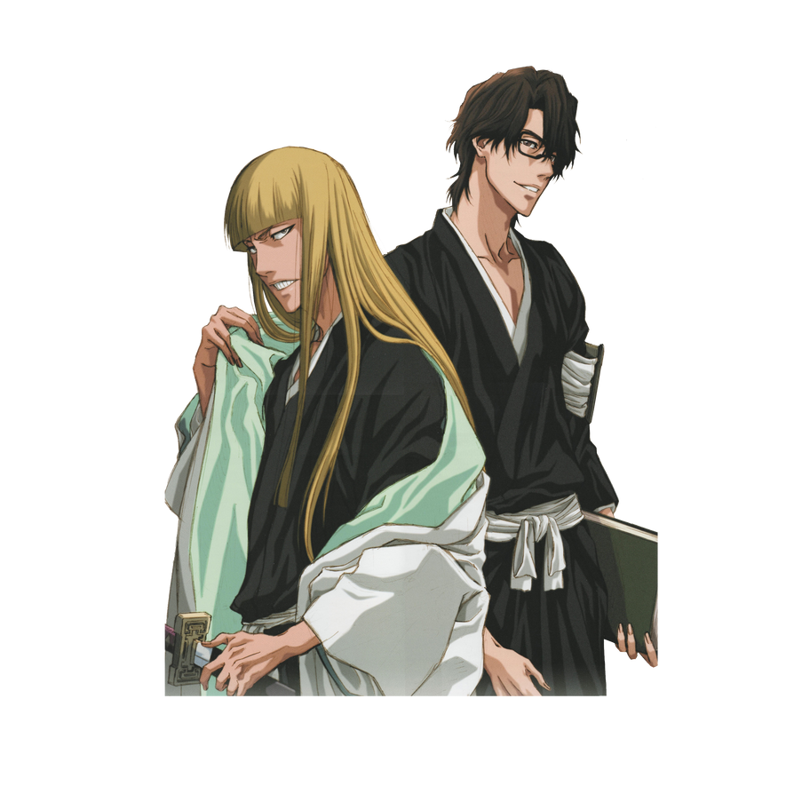 Sinji and Aizen by Narusailor