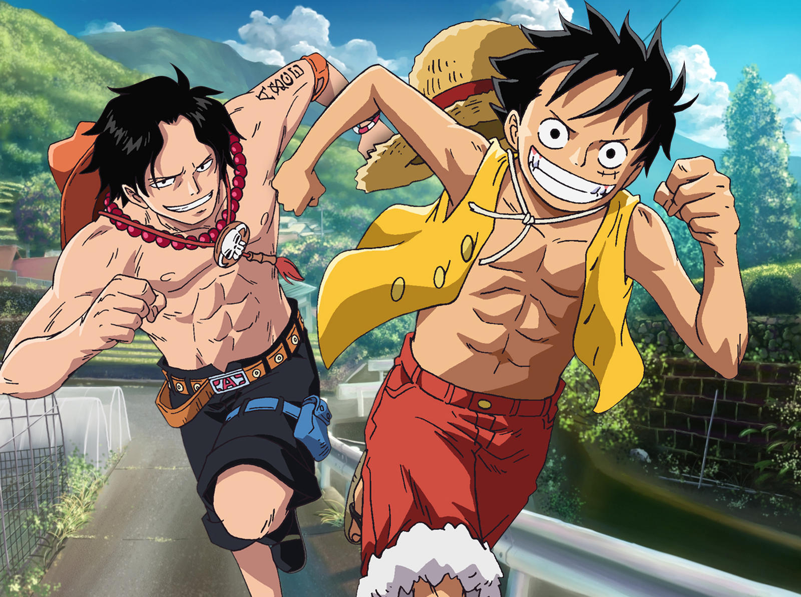 ace and luffy fighting wallpaper - photo #29