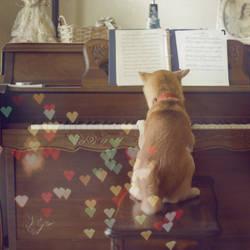 The Next Mozart