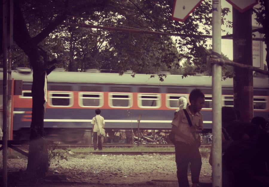 train by petkanna