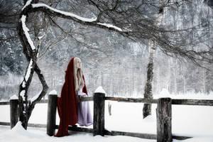 Red Riding Hood by yoru0704