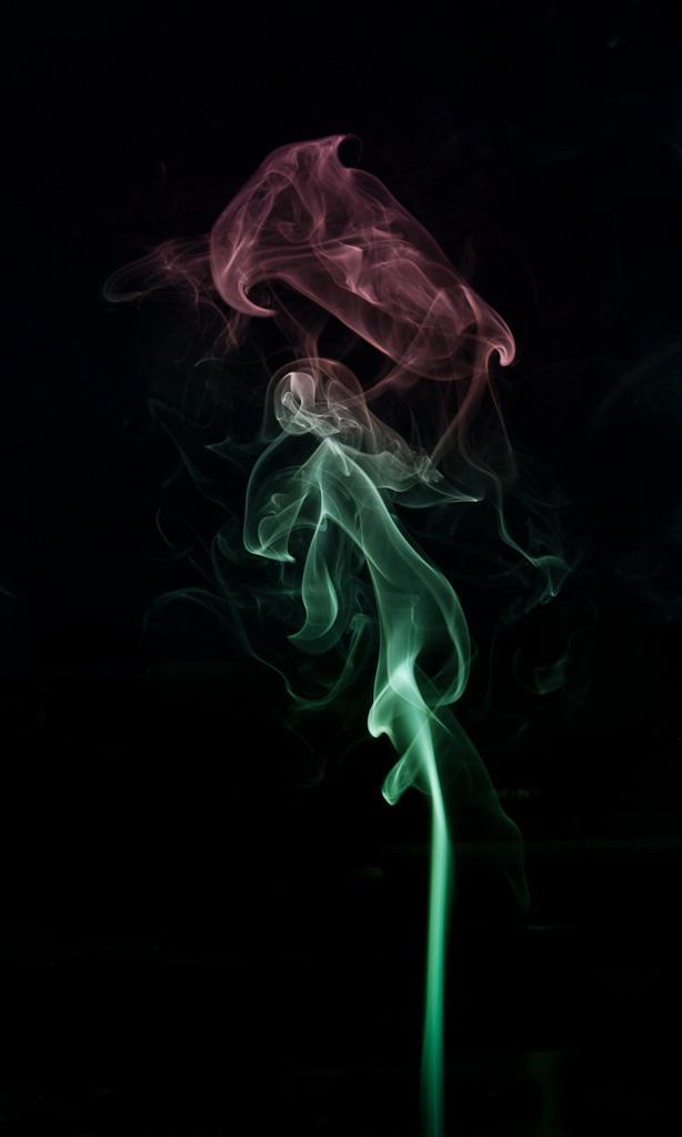 Smoking Rose by duris