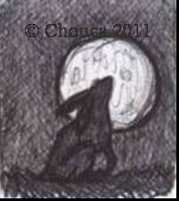 Chouca-of-the-sands's Profile Picture