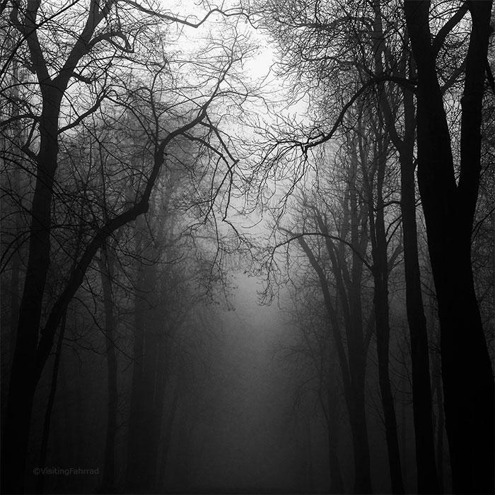 tranquillite envoutante by VisitingFahrrad