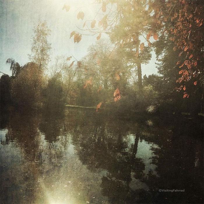 rayon d'automne by VisitingFahrrad