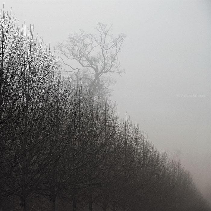 le soleil que le brouillard efface by VisitingFahrrad