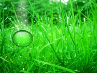 Elliptica grass by Peorthyr