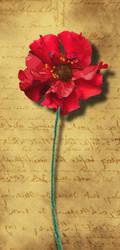 Poppy by Peorthyr