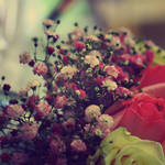 flower power by friday-forever