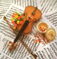 The Violin Sensation by Vissyscrafts