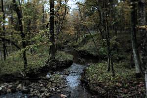 Deer Grove 5 by KilCillian