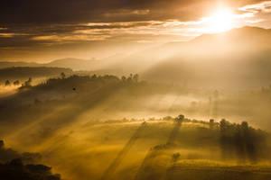 Valley by ldinami7e