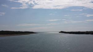 by the estuary near Robbin island.