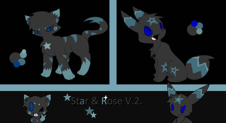 Star and rose by Scruffyeevee