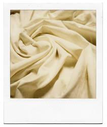 rosa de nuestros vientos by buhoazul