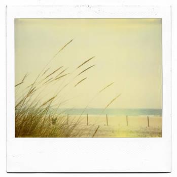 wind caress by buhoazul