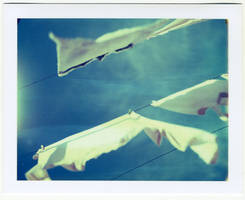 hanged dreams