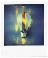 the light inside by buhoazul