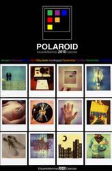 Polaroid 2010 Calendar by buhoazul