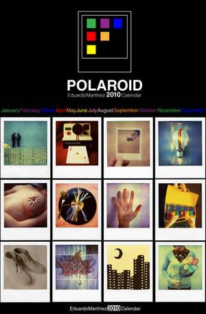 Polaroid 2010 Calendar