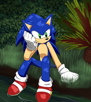 Sonic Adventure by Harryfly