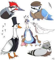 Birds in clothes