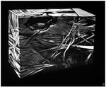 Space Cube